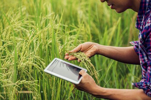 Tarımsal verimliliğin artması için teknoloji kullanımının önemi
