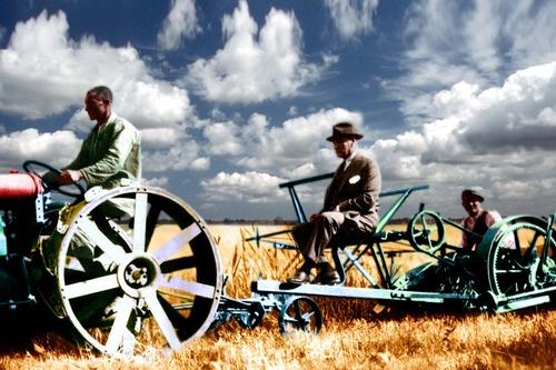 Önce Tarım: Atatürk Çiftlikleri